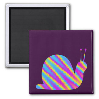 rainbow snail 2 inch square magnet