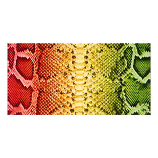 Rainbow Snakeskin Custom Photo Card