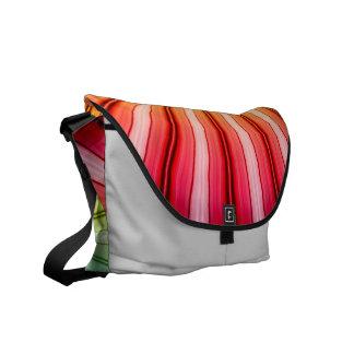 Rainbow Southwestern Flair Messenger Bag
