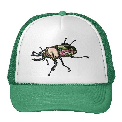Rainbow Stag Beetle Hat
