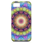 Rainbow stained Glass iPhone 5 Cover