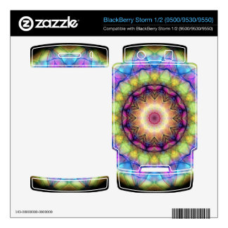rainbow stained glass skin for BlackBerry storm