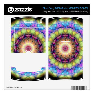 rainbow stained glass BlackBerry 8830 decal