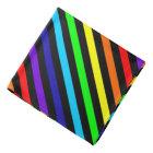 Rainbow Stripes Bandana