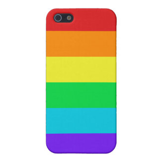 Rainbow Stripes iPhone 5/5S Matte Finish Case Case For iPhone 5/5S