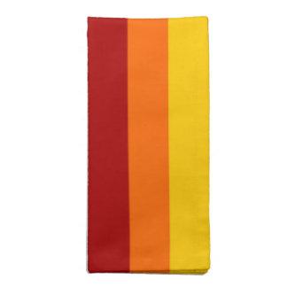 Rainbow Stripes Napkins