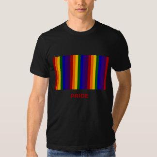 Rainbow Stripes Tee Shirt