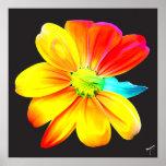 Rainbow Sunflower Poster
