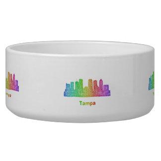 Rainbow Tampa skyline Bowl