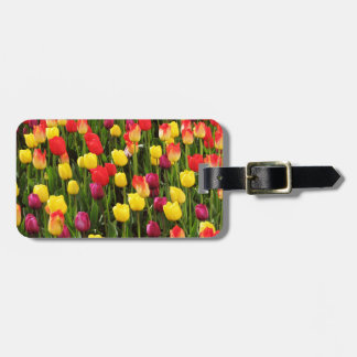 Rainbow Tapestry Travel Bag Tags