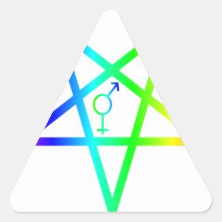 Rainbow Transgender Inverted Pentagram Triangle Stickers