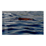 Rainbow Trout Business Card