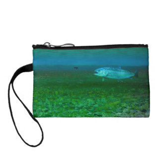 Rainbow Trout chasing a fly Change Purse