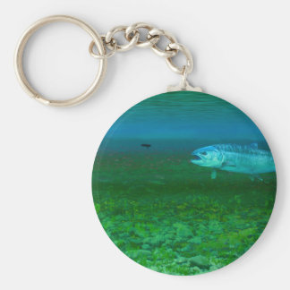 Rainbow Trout chasing a fly Key Chains
