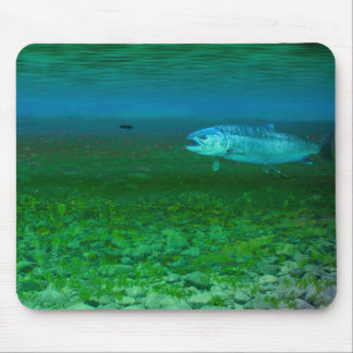 Rainbow Trout chasing a fly Mouse Pad