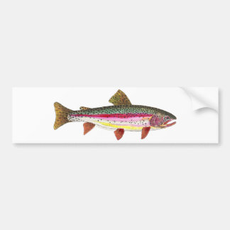 Rainbow Trout Fish Car Bumper Sticker