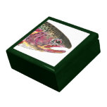 Rainbow Trout Fish Trinket Box