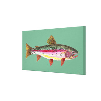 Rainbow Trout Fishing Gallery Wrapped Canvas