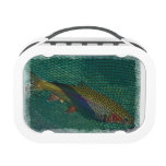 Rainbow Trout in the Net Yubo Lunchbox