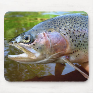Rainbow trout mouse pad