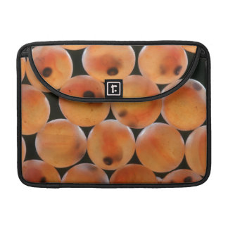 Rainbow Trout (Oncorhynchus Mykiss) Roe Sleeve For MacBook Pro