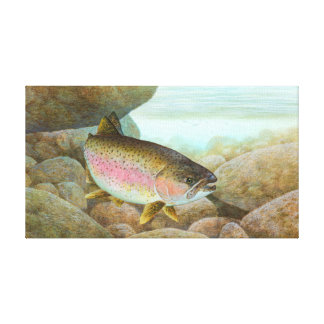 Rainbow Trout Painting Canvas Print