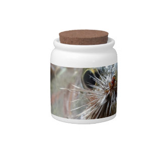 Rainbow Trout photo Candy Dish