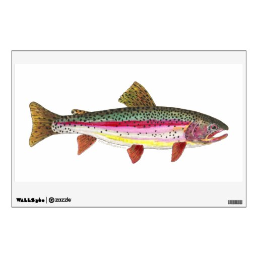 Rainbow Trout Room Graphic