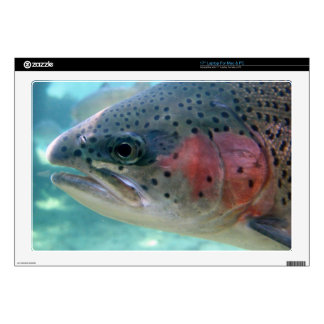 Rainbow Trout Decals For Laptops