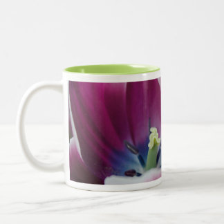 Rainbow Tulip Two-Tone Coffee Mug