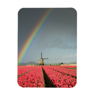 Rainbow, tulips and windmill vertical magnet
