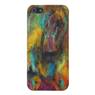 Rainbow Warrior Cover For iPhone SE/5/5s