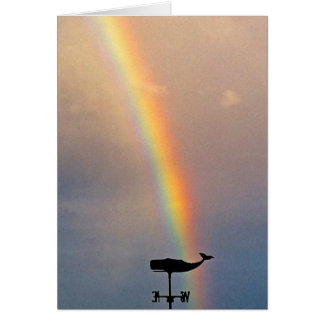 Rainbow Whale Cards