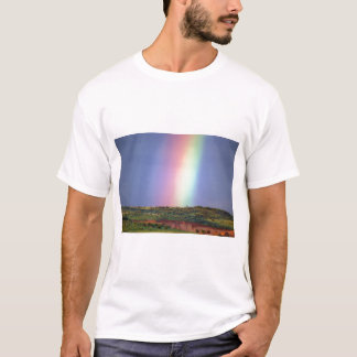 Rainbow wish come true T-Shirt