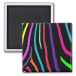 Rainbow Zebra Print 2 Inch Square Magnet