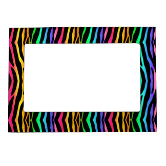 Rainbow Zebra Safari Animal Print Magnetic Picture Frame