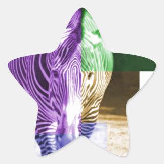 Rainbow Zebra Star Sticker