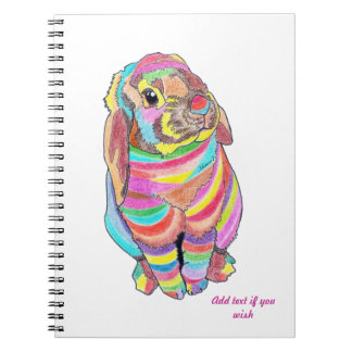 Rainbowbunny Notebook