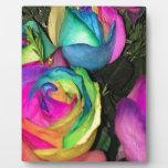 rainbowroses.jpg photo plaques