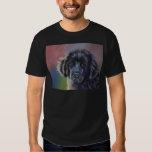 Rainbows and Sunshine - Newfoundland Dog Art T-shirt