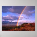 Rainbow's Beauty Poster
