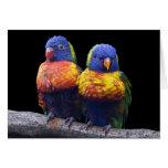 Rainbows Card