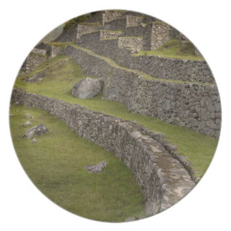 Rainbows over the agricultural terraces, Machu Dinner Plate