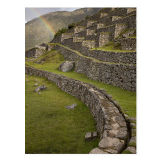 Rainbows over the agricultural terraces, Machu Postcard