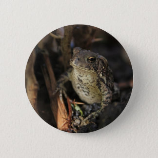 Raindrop and Frog Pinback Button