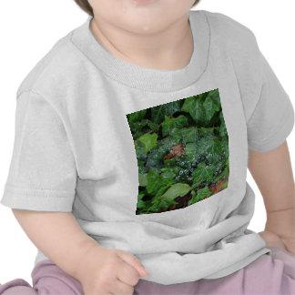 Raindrop Catcher T Shirt