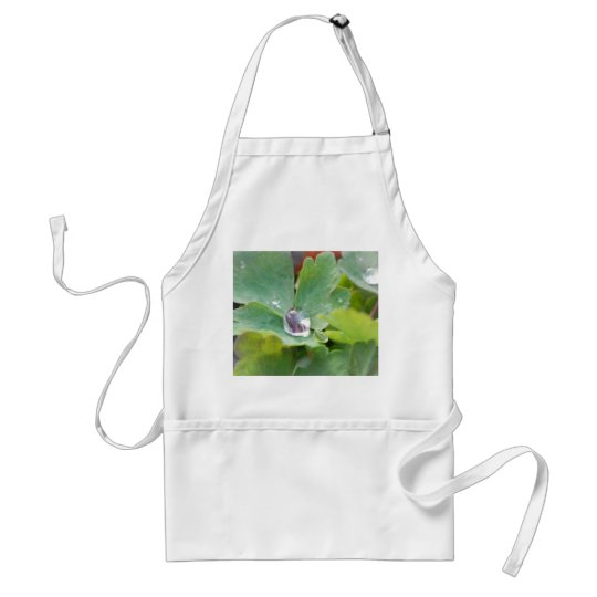 Raindrop on Columbine Leaf Adult Apron