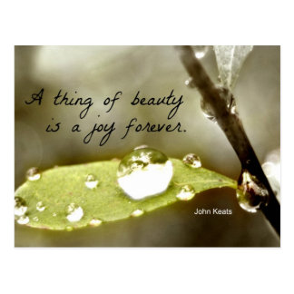 """Raindrop on leaf, with quote: """"A thing of beauty"""" Postcard"""