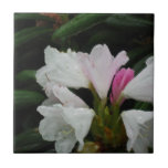 Raindrop on Rhododendrons Ceramic Tile
