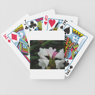 Raindrop on Rhododendrons Poker Cards